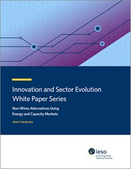 White Paper Series: Non-Wires Alternative - title page