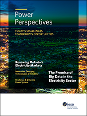 Cover of 2019 Power Perspectives