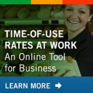 Time of use rates at work; an online tool for bussiness